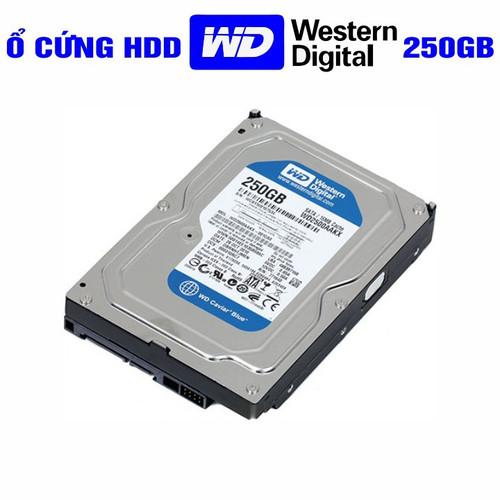 HDD 250G